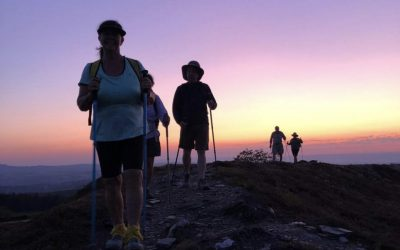 The Camino on New Knees with Michelle Lloyd