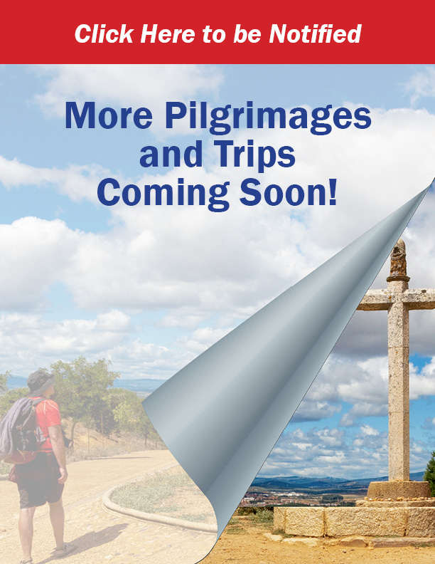 More-Trips-Coming-Soon